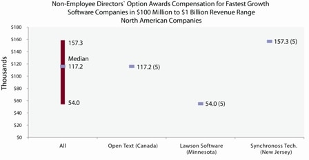 Non-employee directors' option awards compensation for fastest growth software companies
